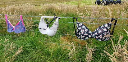 The Bra Fence is Gaining Popularity